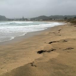 stormy matapouri bay
