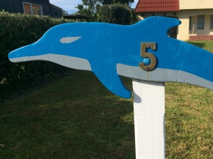 Dolphin street number