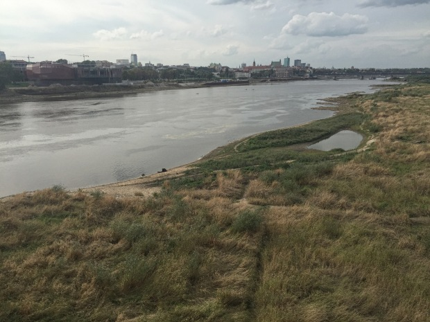 The Vistula here has two distinct riverbanks: the west (being nearest the main old and new towns) is relatively cultivated; the east is more wild. I decided to head over the bridge for a walk on the wild side (ho ho)