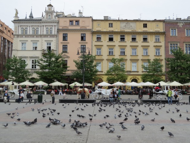 There are loads of tourists/people here but there are even more pigeons