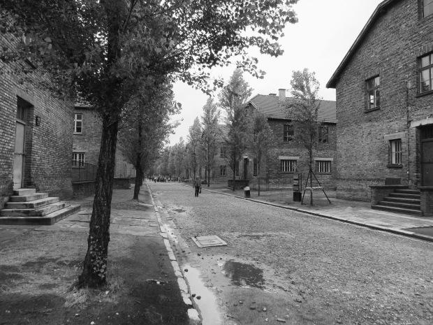 Auschwitz road