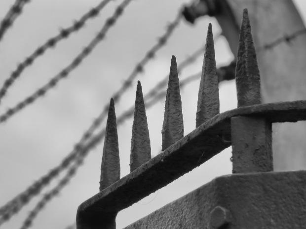 Auschwitz gate spikes