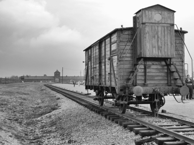 The railway line split into three and extended right back. These were the platform areas for unloading and sorting  people