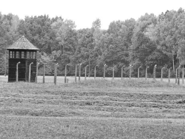 Birkenau watchtower and fence
