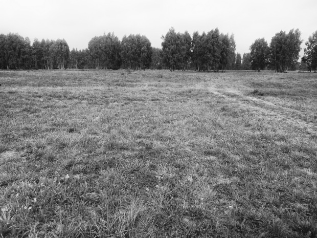 Just when you think you're at one edge of the camp, turns out this field was yet another section of the camp