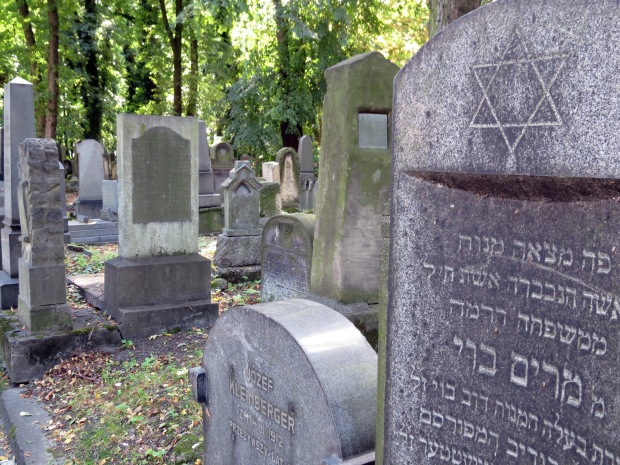 The New Jewish Cemetery - which left me wondering what the old one must be like