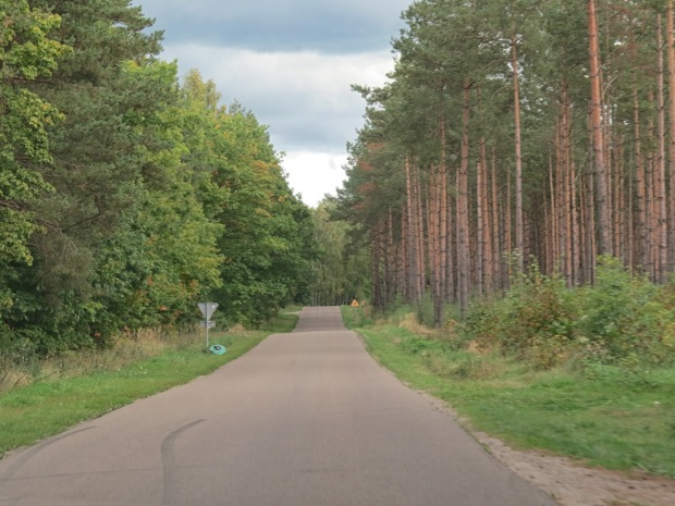 The region is peppered with forestry. Not here but on the other side of Kokoszkowy is the Szpęgawskiego Forest where the Nazis executed 5-7,000 people