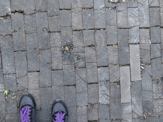 In 1900 most of Sydney was paved in wooden blocks though were replaced within a few decades with the introduction of cars. Some of the original blocks remain, hidden underneath the asphalt.